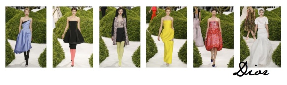 Dior copy